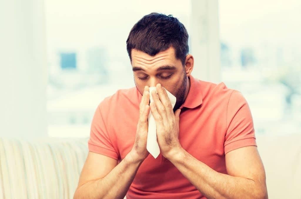 Шиповник от простуды у мужчин