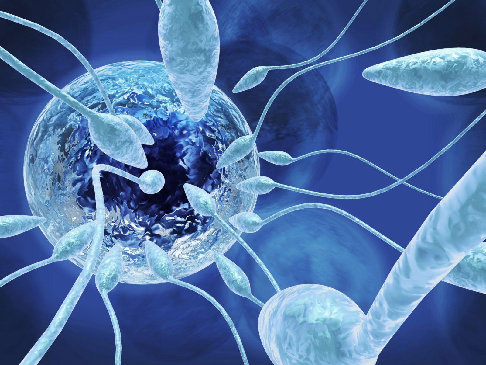 Причины и виды аспермии у мужчин