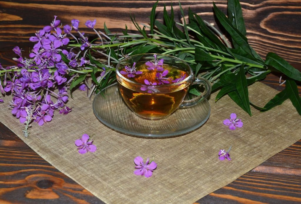 Противопоказания иван-чая при простатите