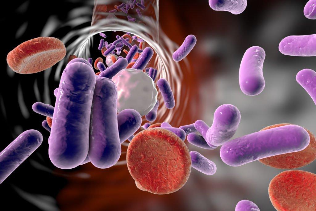 Причины появления бактериального простатита
