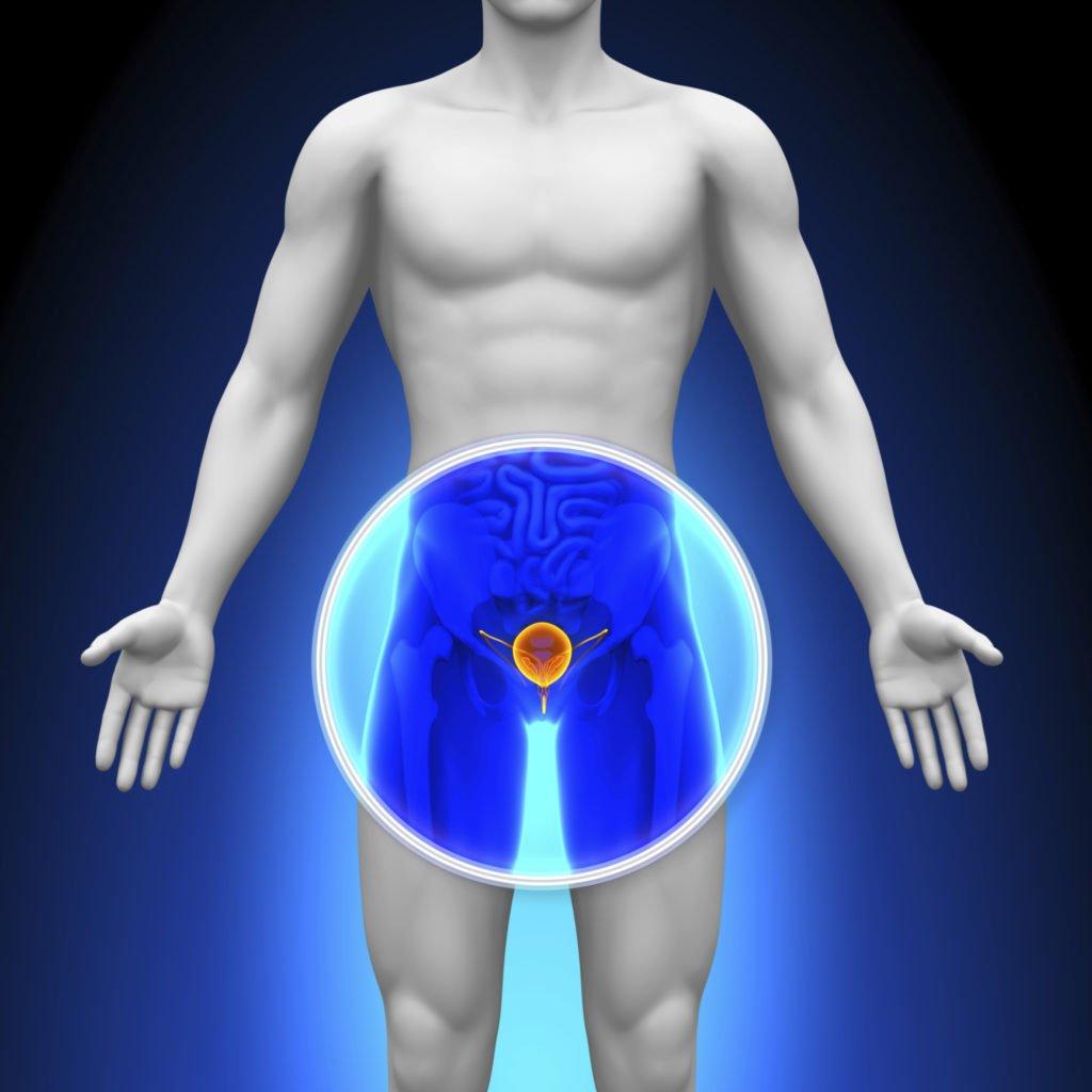 Виды простатита у мужчин и их особенности