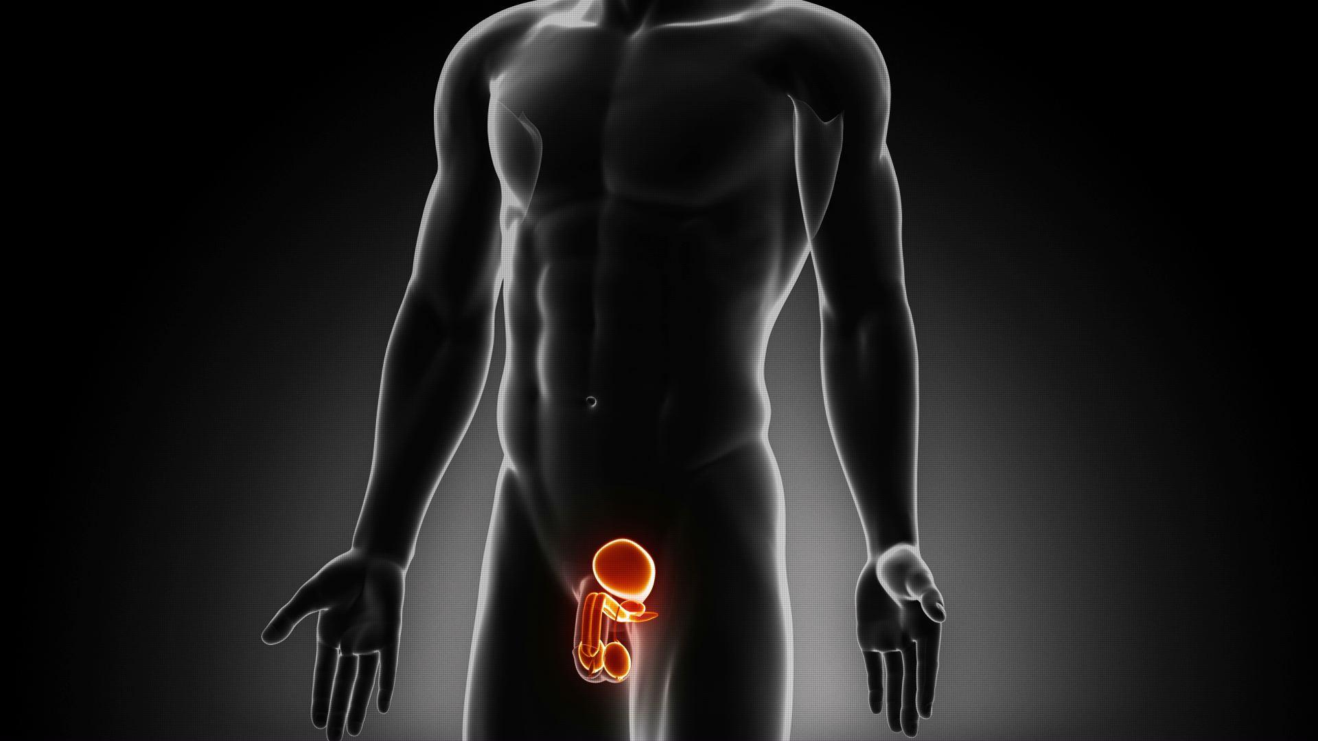 Нет эрекции после хронического простатита