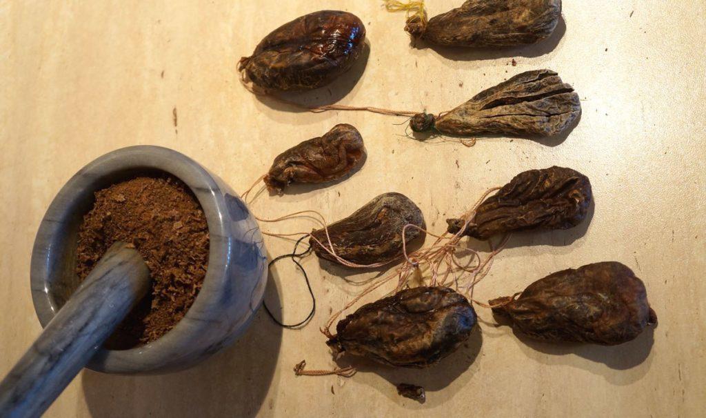 Порошок из бобровой струи